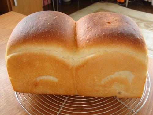 食パン@まぁパパへ